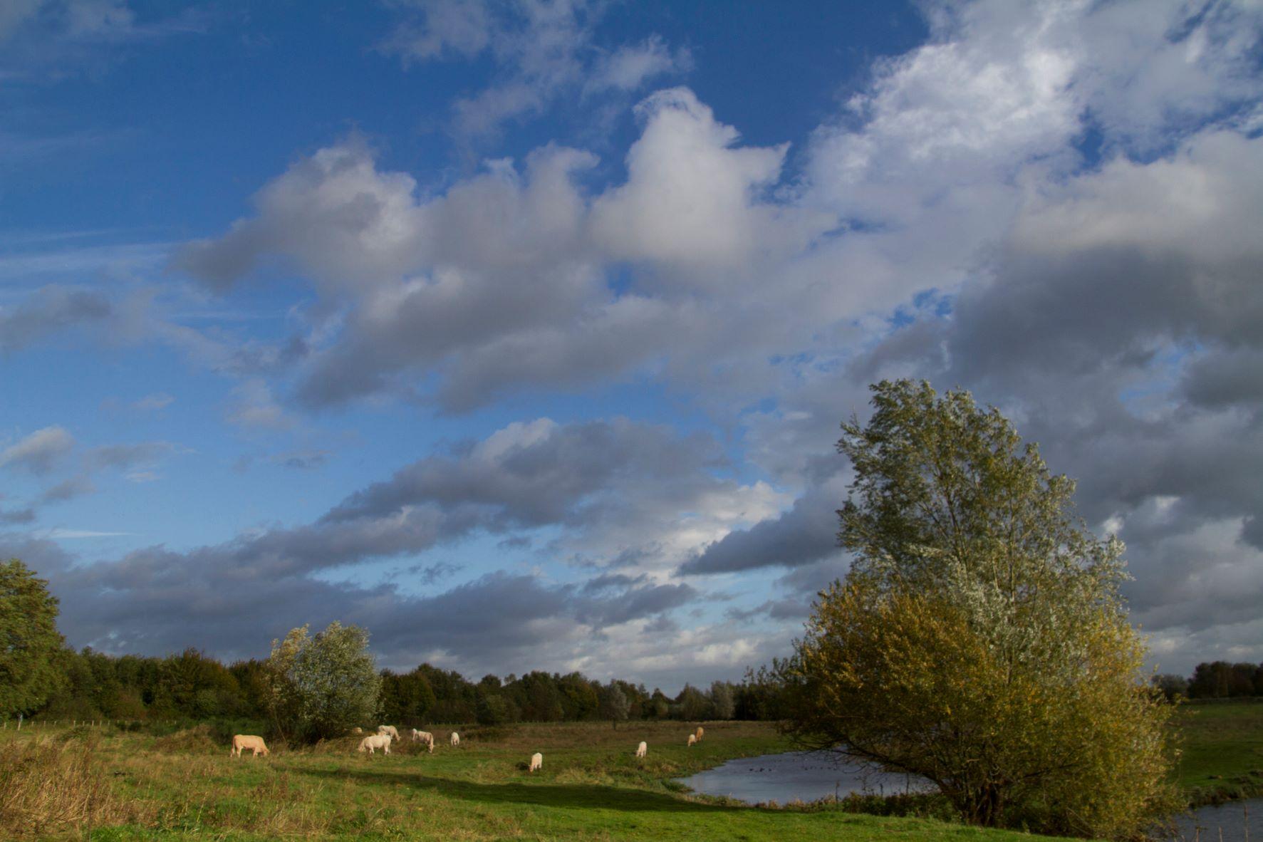 wind en wolken in het Markdal